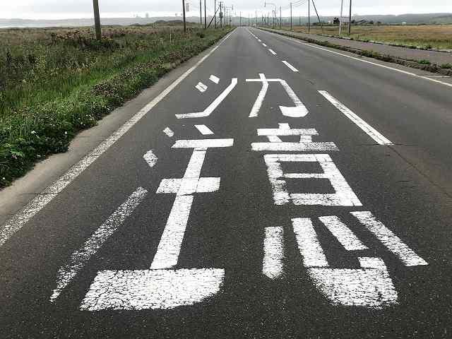 シカ注意と書かれた路面標示